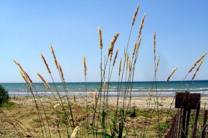 Presqu'ile Beach